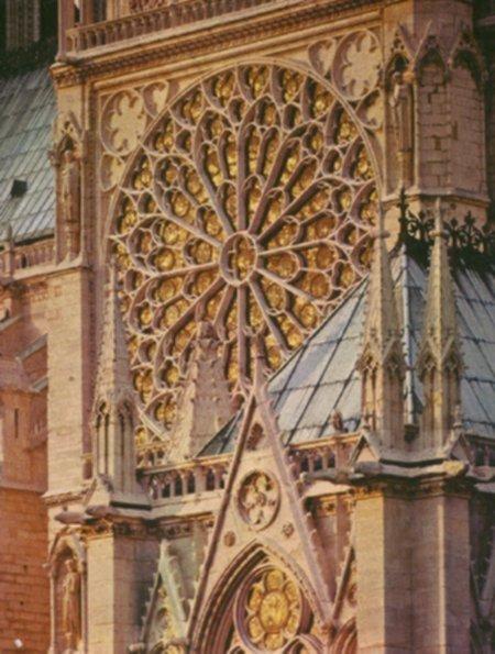 Notre Dame Essays