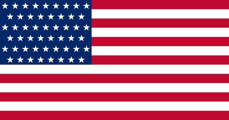 Modern American Protest and Message FlagsAmerican Flag 51 Stars